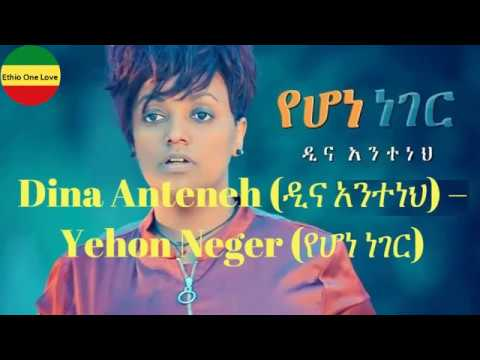 Dina Anteneh(ዲና አንተነህ)-Yehon Neger(የሆነ ነገር) with Lyrics ግጥም