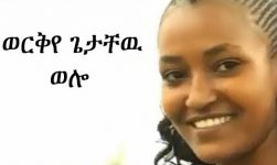 Best New Ethiopian Traditional Music 2014 Workye Getachew - Wollo