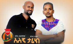 Fikiru Alebachew & Feteh Tesfa - Alegn Tarik | አለኝ ታሪክ - New Ethiopian Music 2020 (Official Video)